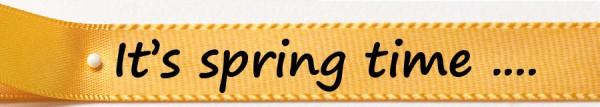 Frühlingsband It`s spring time: 15mm breit / 25m-Rolle: gelb mit schwarzer Schrift